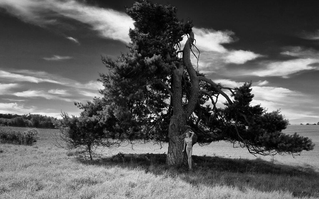 Chiara am Baum